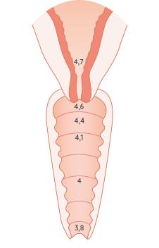 pH d'une femme hors période d'ovulation